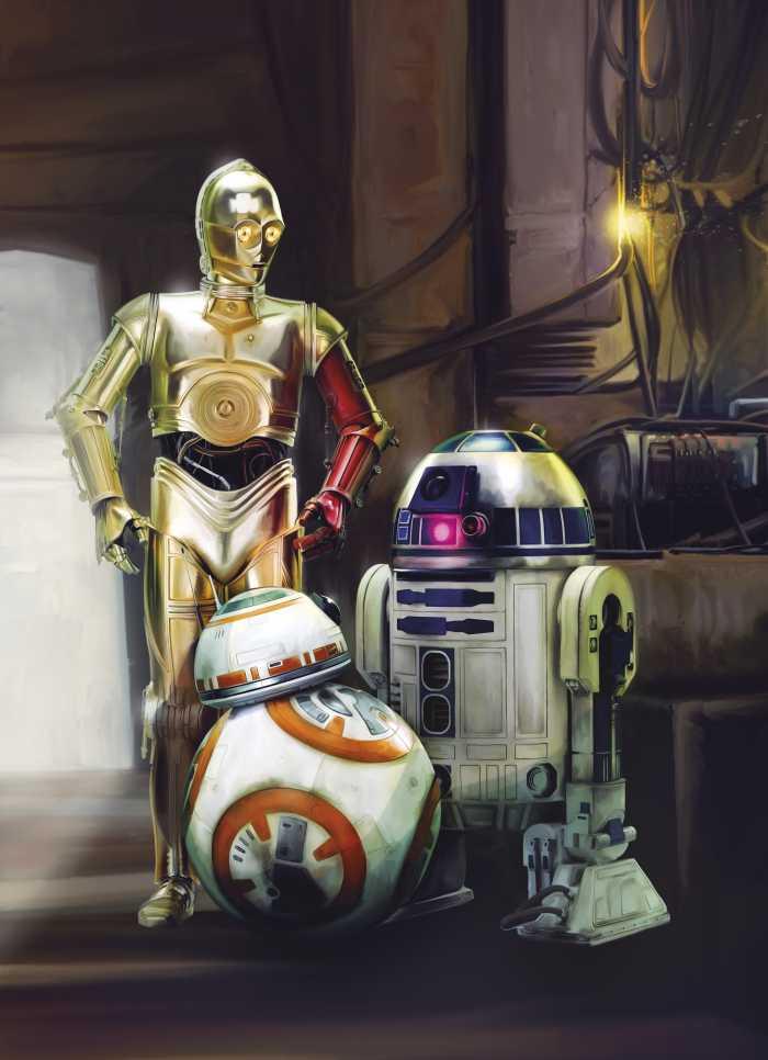 Photo murale Star Wars Three Droids