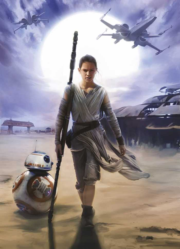 Photo murale Star Wars Rey