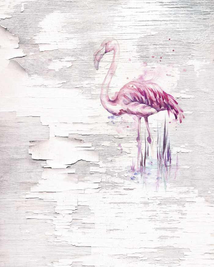 Poster XXL impression numérique Pink Flamingo