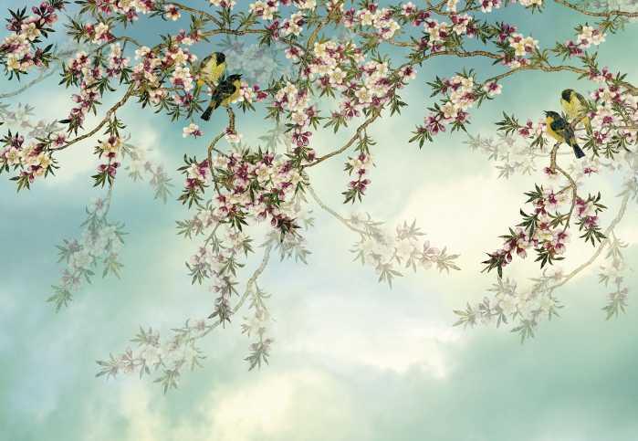 Photo murale Sakura