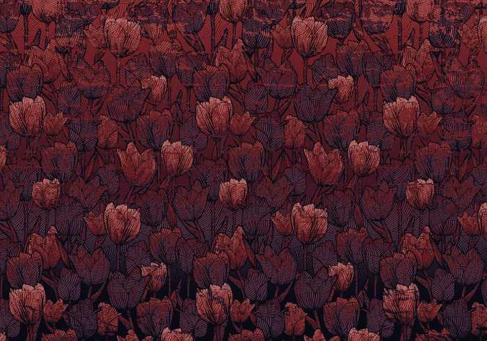 Poster XXL impression numérique Tulipe