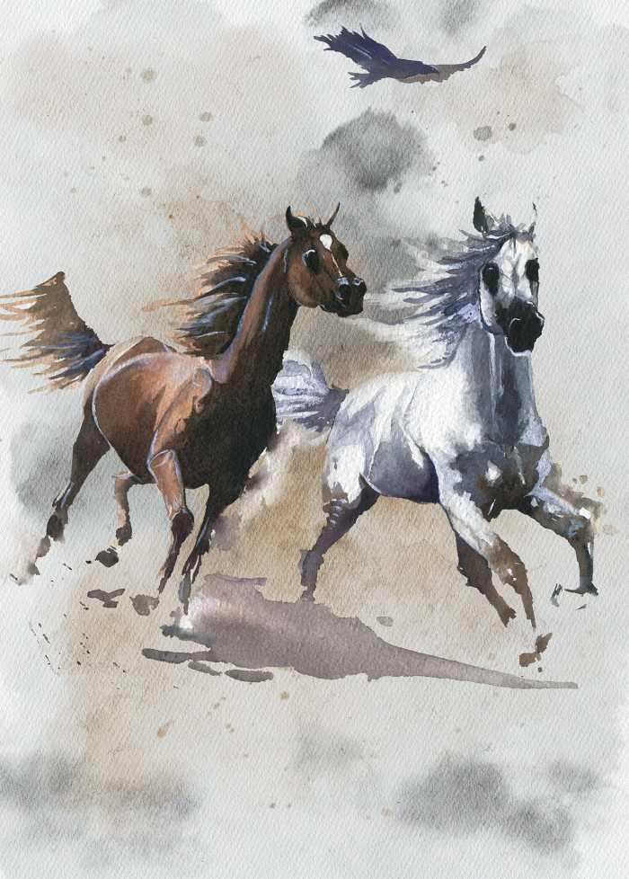Poster XXL impression numérique Wild Ride