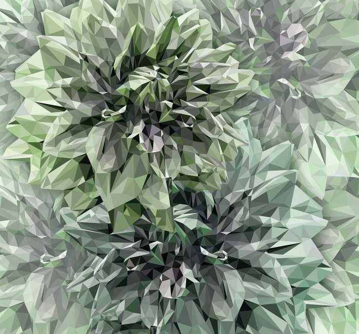 Poster XXL impression numérique Emerald Flowers
