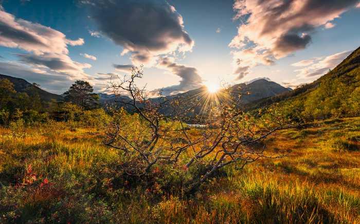 Poster XXL impression numérique Norwegische Herbstwelten