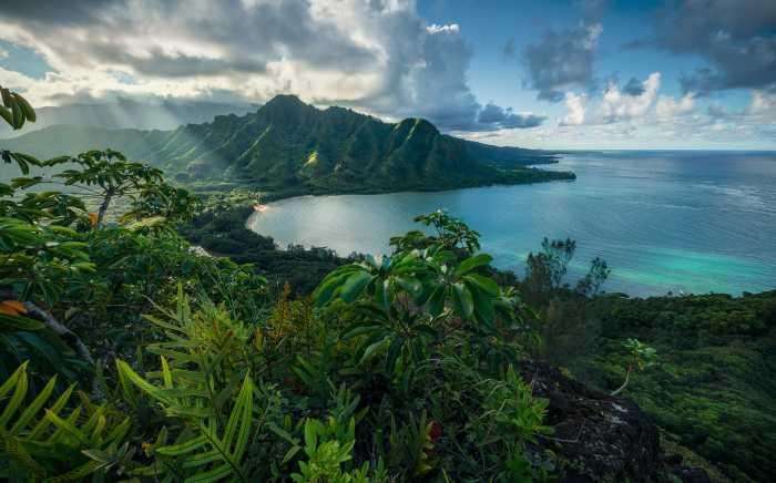 Poster XXL impression numérique Jurassic Island