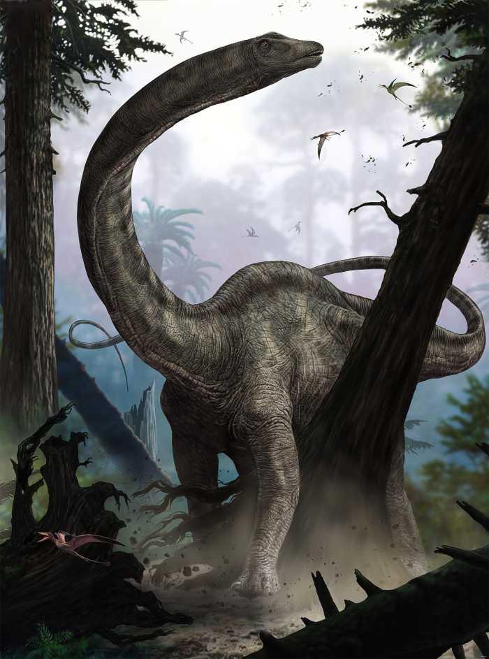 Photo murale intissé Rebbachisaurus