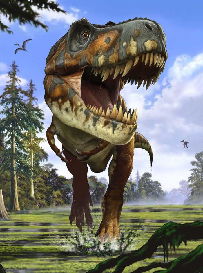 Photo murale intissé Tyrannosaurus Rex