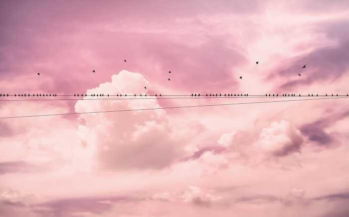 Poster XXL impression numérique Cloud Wire