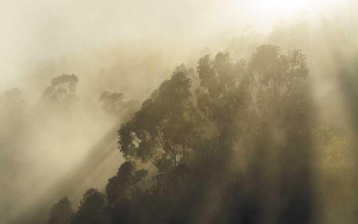 Poster XXL impression numérique Misty Mountain