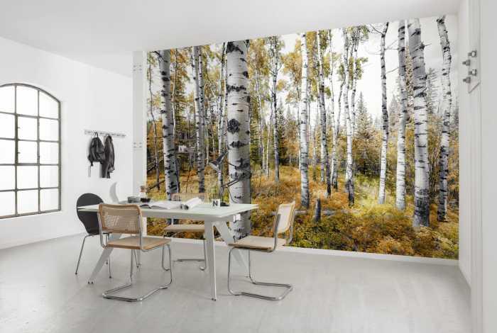 Poster XXL impression numérique Colorful Aspenwoods